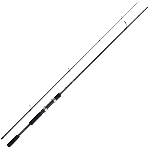 Canna Shimano FX XT 2.70m 14-40g Pesca Mare Lago Trota SPIGOLA LAMPUGA PALAMITA