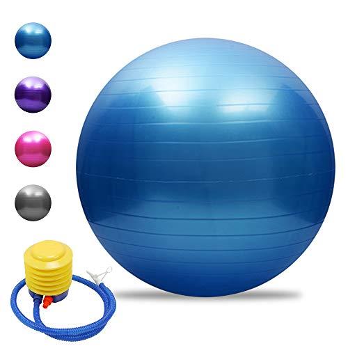 TOMSHOO Palla da Ginnastica, Palla Fitness Anti-Scoppio Stabile Palla Yoga Ball con Pompa Rapida per Yoga e Pilates Esercizi Fitness Allenamento 45cm/55cm/65cm/75cm