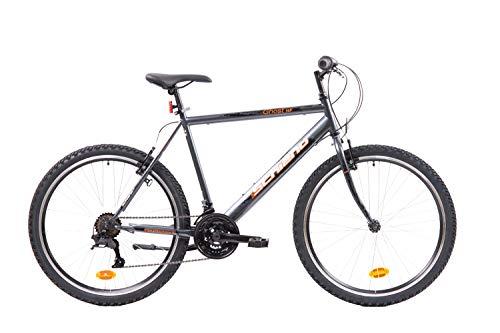 F.Lli Schiano Ghost Bici Mtb, Uomo, Antracite - Arancio, 26''